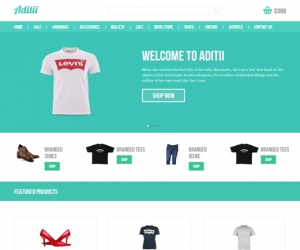 Aditii a Flat ECommerce Responsive Web Template