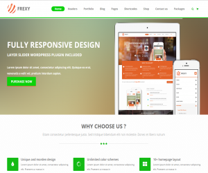 frexy responsive multipurpose html5 templat