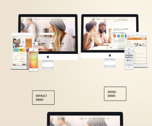 LEARNING MANAGEMENT SYSTEM WORDPRESS THEME
