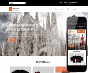 New Store a Flat Ecommerce Bootstrap Responsive Web Template